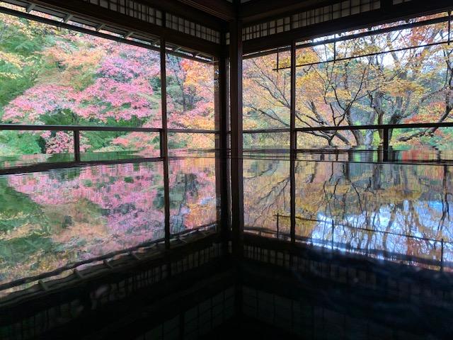 【岐阜(岐阜市)のリフォーム】念願の瑠璃光院に家族で行けました